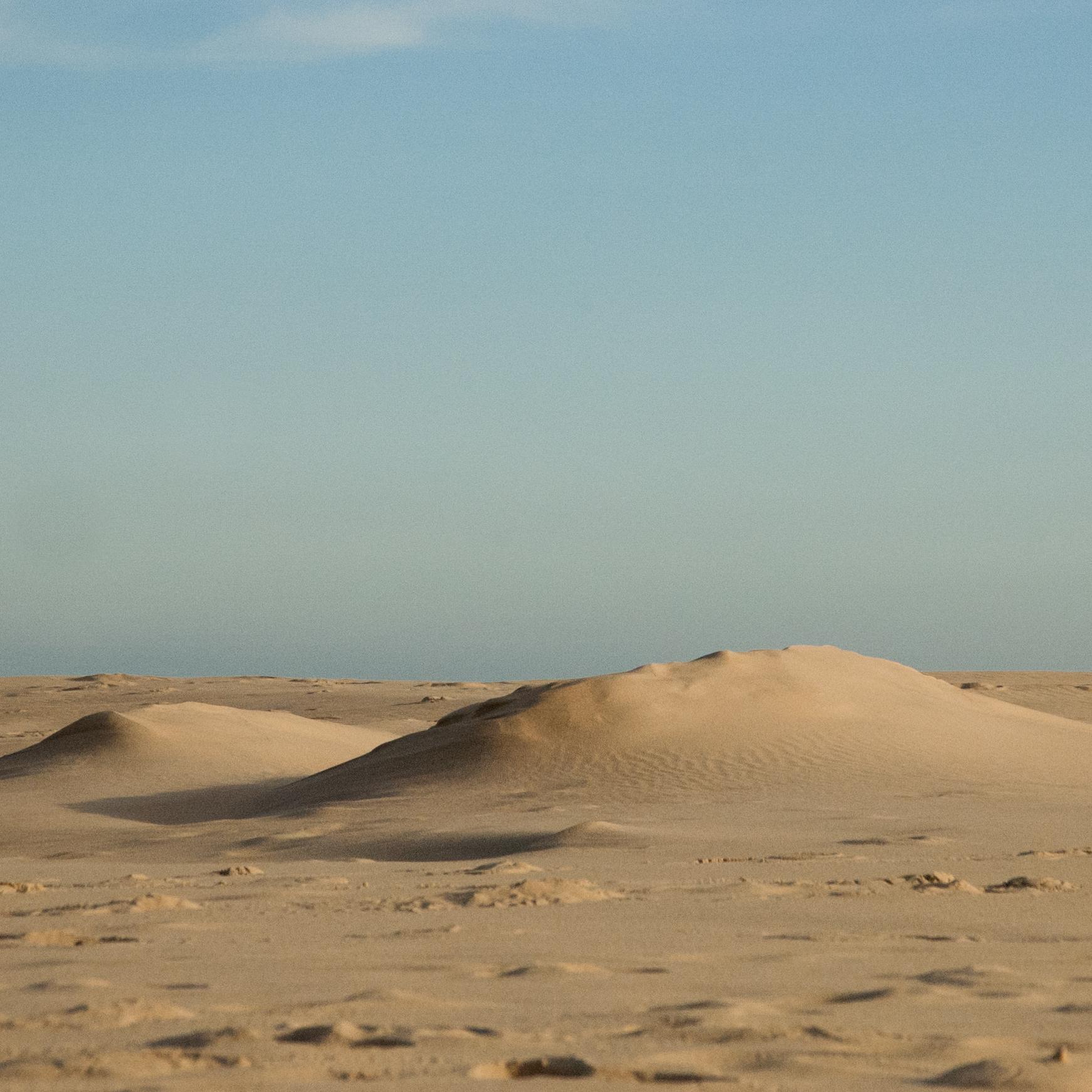paisaje_duna (9)