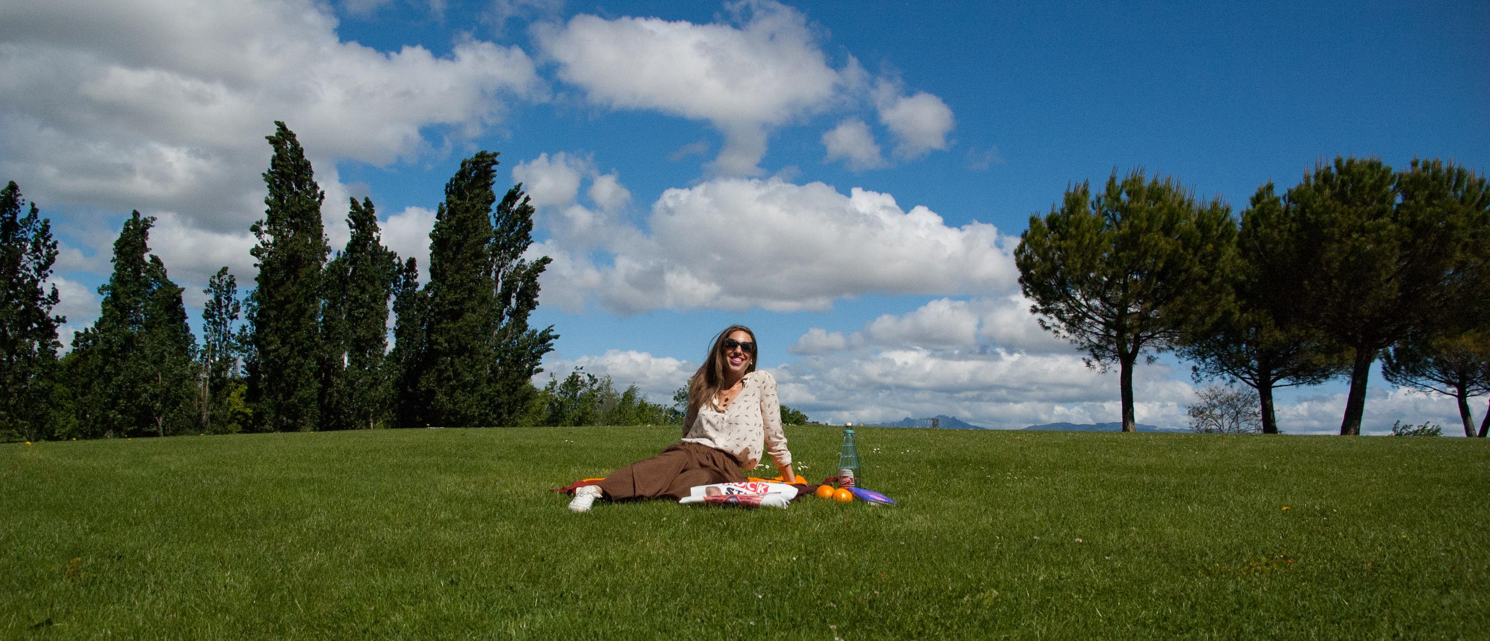 picnic-10